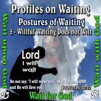 Profiles on Waiting – Posture – Willful Waiting Does not Wilt